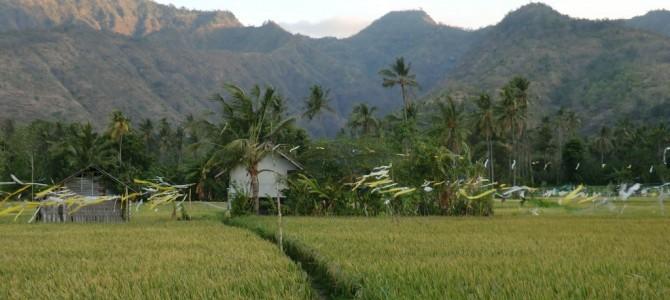 Bali….2ème partie !