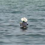 pêcheur perdu en mer?