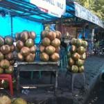 stands de coconuts à foison pour 0,70€