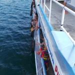 pêche pour touristes