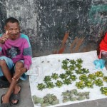 marchands au Timor