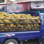camion de Durian... Miam!