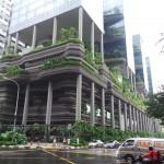 bâtiment végétalisé