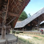 Nos premières maisons Toraja