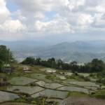 Les montagnes et Rantepao en contrebas