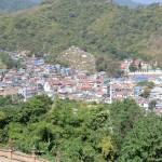 village birman
