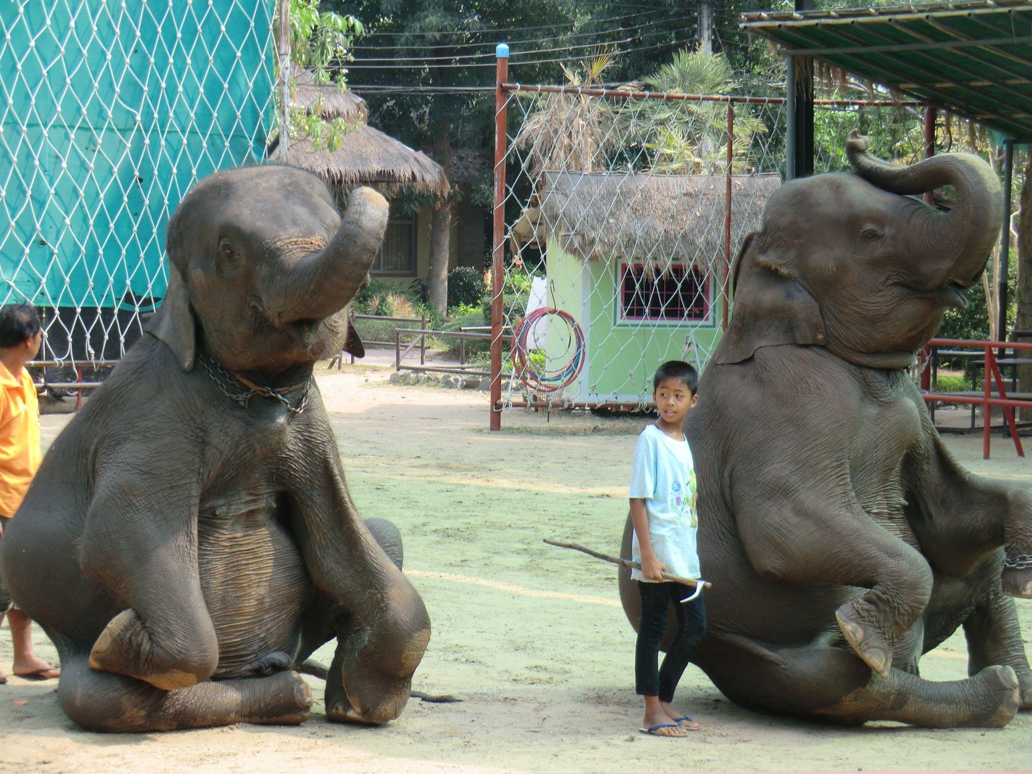 Thaïlande… De l'Est à Bangkok