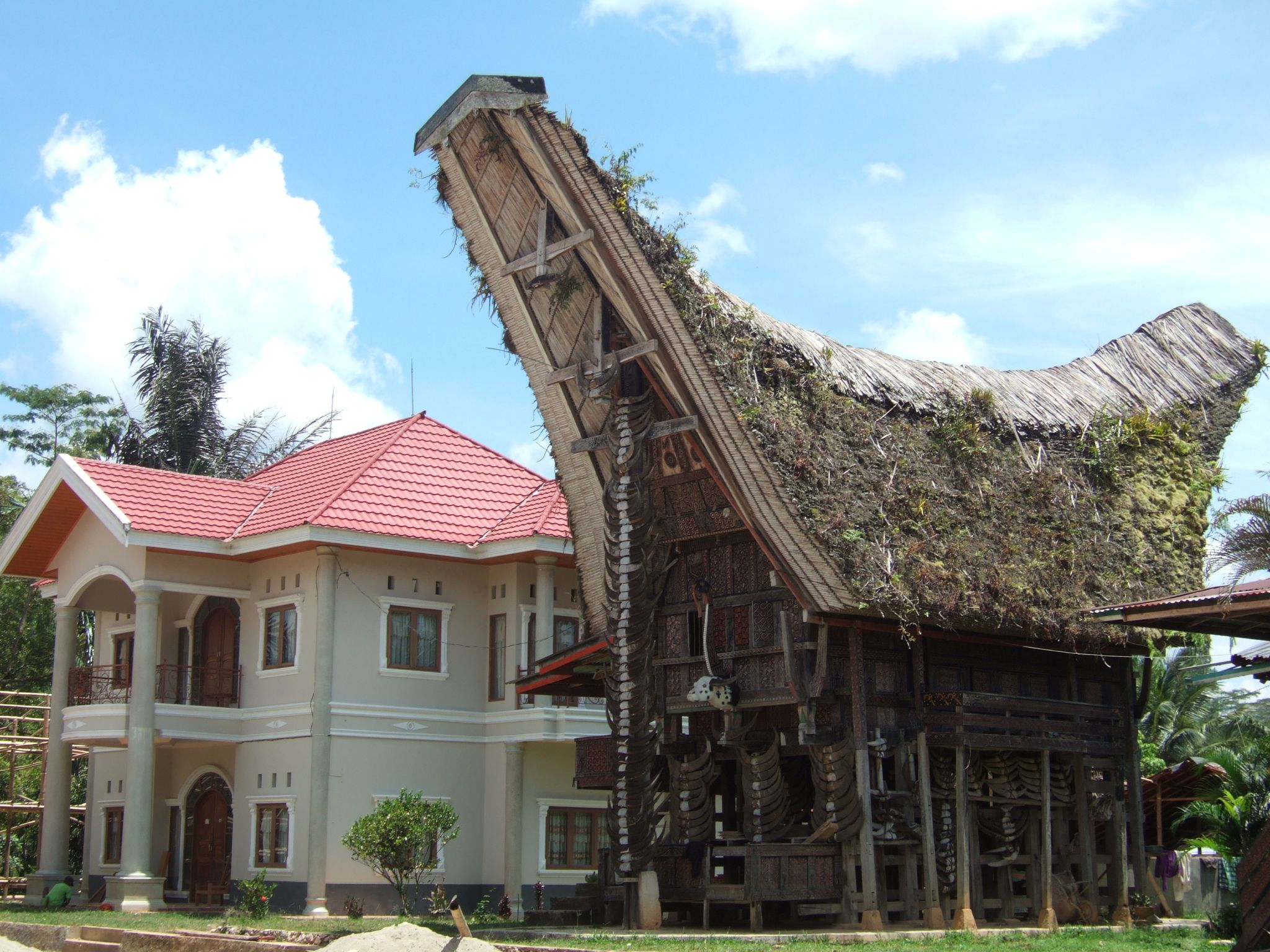 Sulawesi…3ème partie!