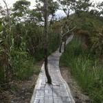 Route qui longe le cratère...Pourquoi s'emmerder?!