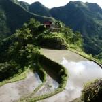 rizières depuis Banaue
