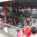 école élémentaire de Banaue